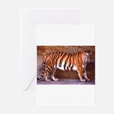 Tiger Five Greeting Cards (Pk of 10)