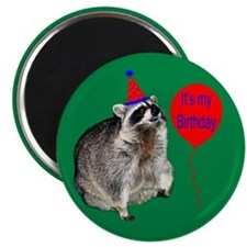 It's My Birthday Magnet Magnets