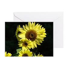 SUNFLOWERS Custom Greeting Cards (Pk of 20)