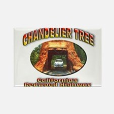 Chandelier Tree Rectangle Magnet