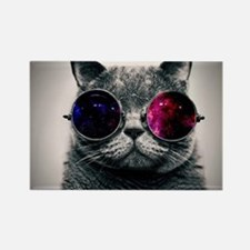Cool Kitty Cat in Glasses Magnets