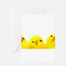 Cool Family projects Greeting Cards (Pk of 10)