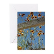cover Greeting Cards