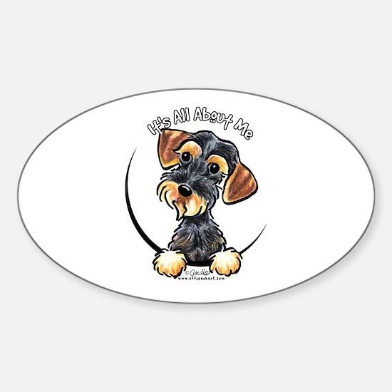 Wild Boar Dachshund IAAM Sticker (Oval)