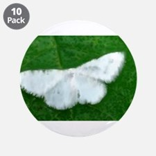 """White Moth 3.5"""" Button (10 pack)"""