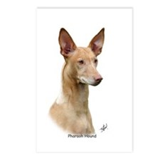 Pharaoh Hound 9Y73D-049 Postcards (Package of 8)