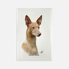Pharaoh Hound 9Y73D-049 Rectangle Magnet