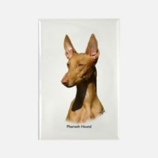 Pharaoh Hound 9P003D-60 Rectangle Magnet