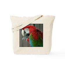 macaw licking foot Tote Bag