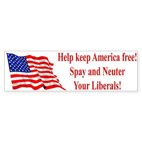 Keep America Free Bumper Sticker
