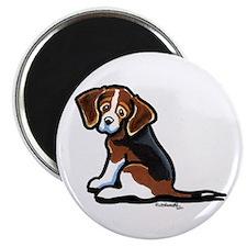 Cute Tri-color Beagle Magnet