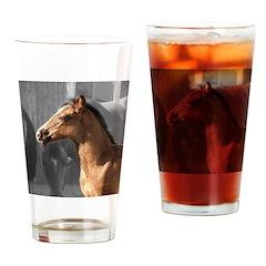 DAKOTA Drinking Glass