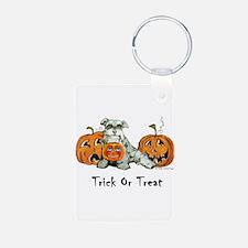 Spooky Schnauzer Halloween Tr Keychains