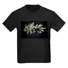 Leafy Seadragon with Weedy Se T