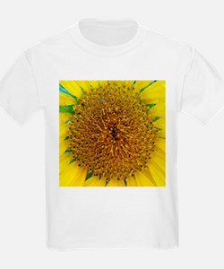 Sunflower Photograph T-Shirt