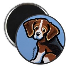 "Cute Tri-color Beagle 2.25"" Magnet (10 pack)"