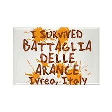 Battle of Oranges Rectangle Magnet (10 pack)