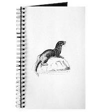 Otter!! Journal