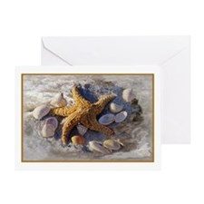 Cute Seashell Greeting Card