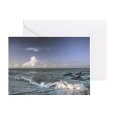 Dolphins Swimmig In The Surf Greeting Card