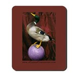Sideshow Duck Mousepad
