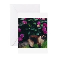 Funny Siamese cat Greeting Card