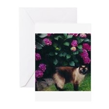 Funny Siamese cat Greeting Cards (Pk of 10)
