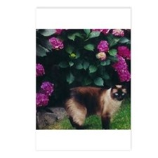 Cute Siamese Postcards (Package of 8)