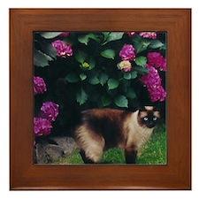 Cute Siamese cat Framed Tile