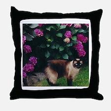 Unique Cat photos Throw Pillow