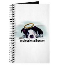 PROFESSIONAL BEGGER Journal
