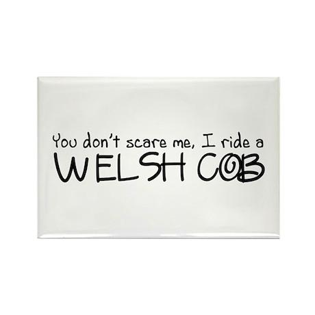 Welsh Cob Rectangle Magnet