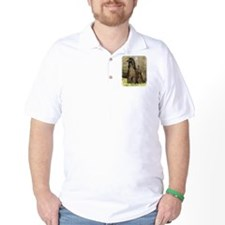 Afghan Hound 9P032D-201 T-Shirt