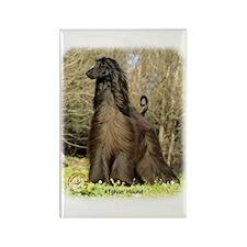 Afghan Hound 9P032D-201 Rectangle Magnet