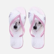 Chinese Crested (Powderpuff) Flip Flops