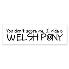 Welsh Pony Bumper Sticker