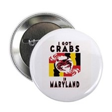 I Got Crabs in Maryland Button