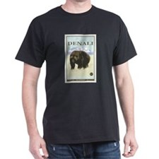 National Parks - Denali T-Shirt
