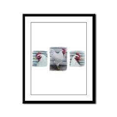 Leghorn Chickens Framed Panel Print