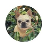 Dog french bulldog tiles Home Accessories