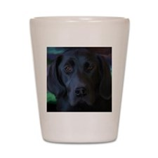 Cute Lab retriever Shot Glass