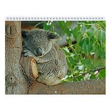 Koala Wall Calendar