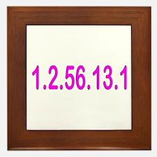 1.2.56.13.1 Framed Tile