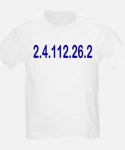 2.4.112.56.2 Blue and Pink T-Shirt