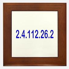 2.4.112.56.2 Blue and Pink Framed Tile