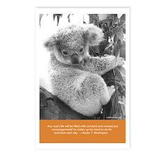 "8 ""Vintage Postcards"" Book Koala Postcards"