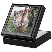 Koala Keepsake Box 2
