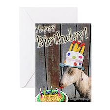 Sassy Happy Birthday Greeting Cards (Pk of 10)