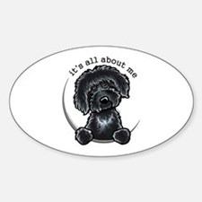 Black Labradoodle IAAM Decal