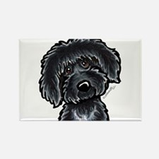 Black Labradoodle Funny Rectangle Magnet